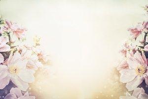Floral pastel color background