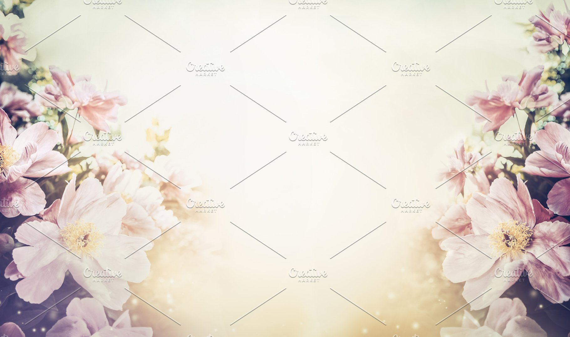 Floral Pastel Color Background High Quality Nature Stock Photos