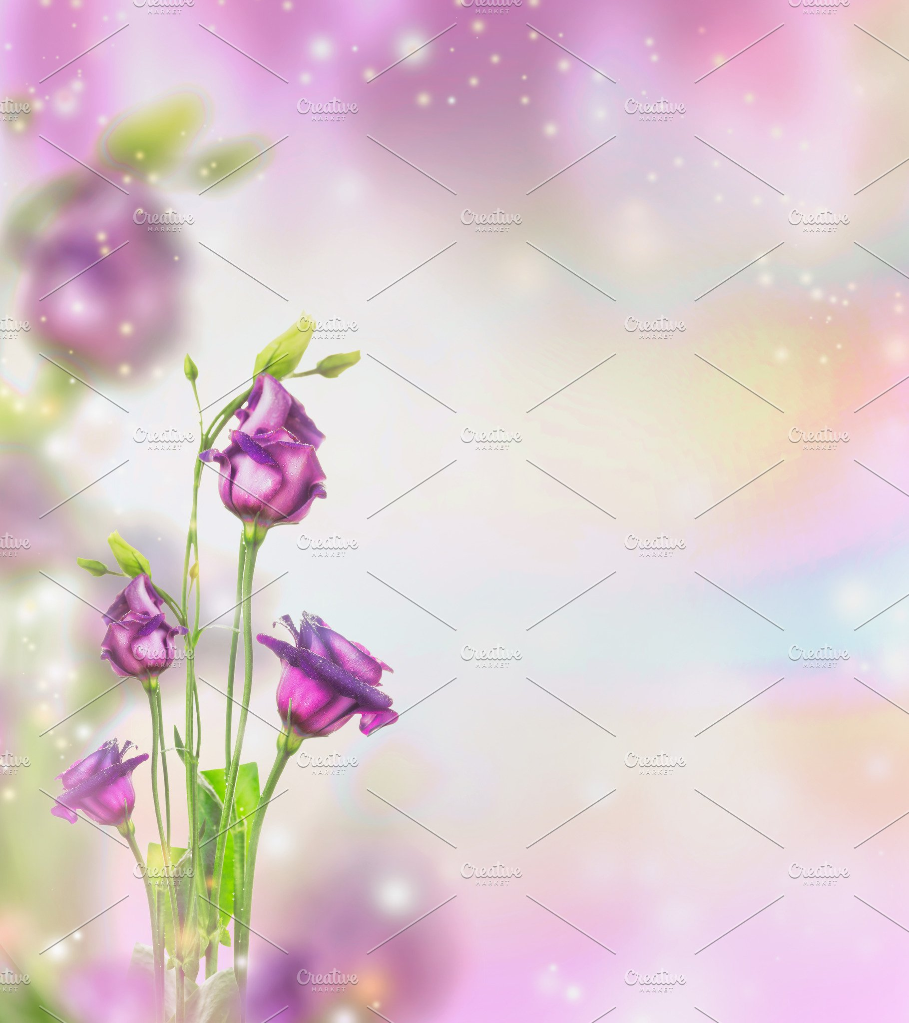 Purple Flowers Background High Quality Nature Stock Photos