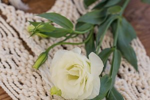 White lisianthus placed on macrame wall art