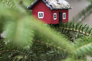 House miniature on fir tree.