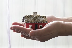 Hand hold house model