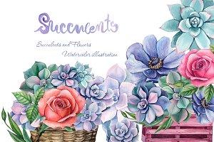 Watercolor succulent composition