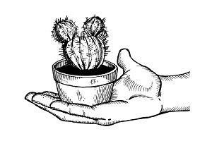 Hand with cactus engraving vector illustration