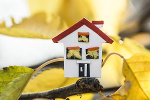 House model and autumn leaves
