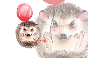 Hedgehog and balloon