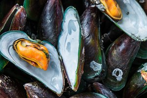 Mussels, Steaming Seafood