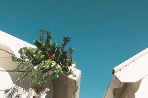 Christmas bough branch, decorating the roof of the white wooden cottage, sunny day. Outdoor