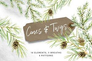 Cones & Twigs