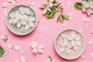 blossom and water bowl