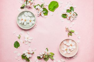 Water bowl with spring blossom