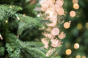 Christmas tree and gold bokeh lights