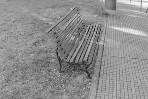 Bank Seat in the Park