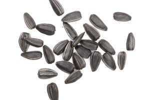 Sunflower seeds isolated on white background. Top view