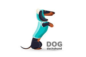 Dachshund dog in blue sweater with hooded side view vector