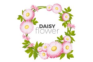 Daisy flowers frame with pink blossoms and green leaves vector