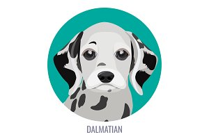 Dalmatian puppy in green circle vector illustration with text