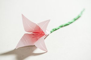 Pink flower origami