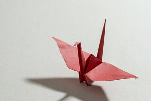 Crane origami on paper