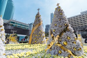 Christmas decoration background with golden lights glowing in Southeast Asia. New year fir trees festive decoration ready for celebration a 2018, Bangkok city landscape, Thailand