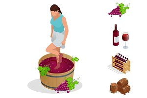 Isometric wine production icons collection. Girl crushes grapes for making wine. Wine festival. Vector illustration isolated on white background