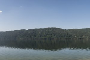 Pine forests and mountain lake