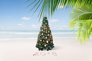 new year tropic