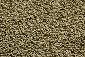 Unroasted Costa Rican Coffee Beans