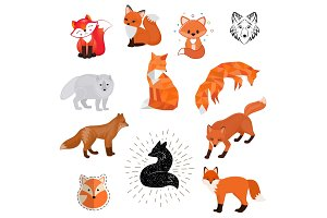 Fox vector cartoon cute illustration of animal wild logo, flat, sketch design wildlife foxy baby isolated wild animal on white background