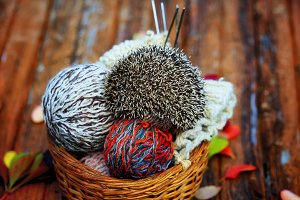 hedgehog in a basket with balls of wool for knitting on the old wooden background in grunge style with autumn leaves rural retro style