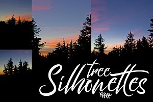 4 Trees Silhouette Backgrounds