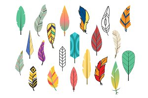 Tribal flat feather different style bird vintage colorful ethnic hand drawn element decorative drawing nature quill painting vector illustration.