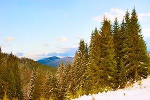 Winter landscape in the Carpatians m