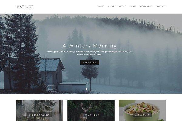 Instinct - Blog & Portfolio Templat…