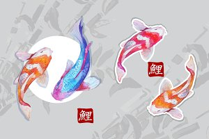 Watercolor carps koi