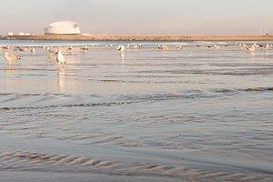 Sunrise at Matosinhos beach