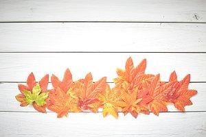 Thanksgiving Autumn Leaves Backgroun