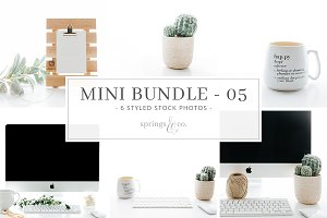 Succulent Mini Photo Bundle - 05