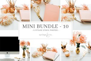 Coral Mini Photo Bundle - 10
