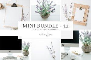 Lavender Desk Mini Photo Bundle - 11
