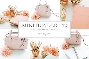 Feminine Coral Mini Photo Bundle -12