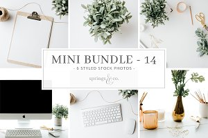 Business Mini Photo Bundle - 14