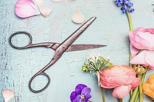 Pastel flowers and shears on blue