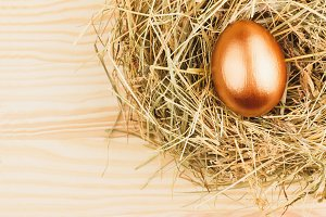 Nest with gold chicken egg