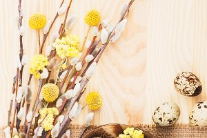 Quail eggs and dry flowers on the wooden background