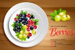 Sale! Berries Realistic Set
