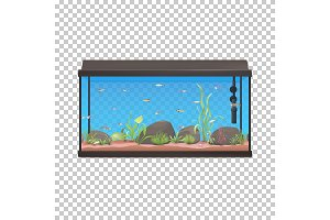 Fish tank. Aquarium illustration with fishes stones and plants.