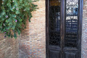 Artistic door with grille and glas