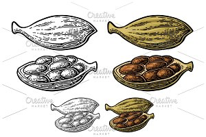 Cardamom spice fruit  with seed
