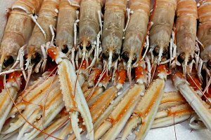 Seafood crustacean